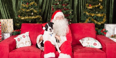 RSPCA Santa Paws - Gold Coast