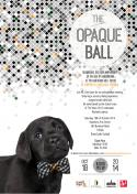 Guide Dogs Victoria Opaque Ball - Melbourne