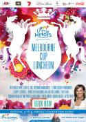 Melbourne Cup Luncheon 2014 - Adelaide - Little Heroes Foundation