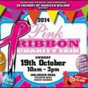 Pink Ribbon Charity Fair 2015 Gala - Mackay QLD