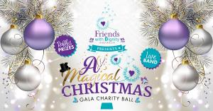 Magical Christmas with Friends Gala Ball
