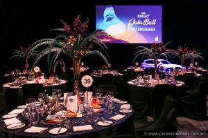 Ronald Mcdonald House Charities NSW Ball - Sydney