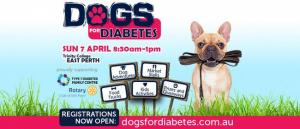 Dogs for Diabetes Walk