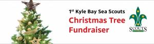 1st Kyle Bay Sea Scouts Christmas Tree Fundraiser