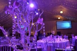 White Orchid Ball 2017 - Fundraiser for Cancer Council QLD