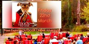Paws Explores OUTDOOR CINEMA Adventure - A Dogs Way Home