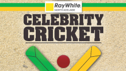 Champions for Childhood Cancer Celebrity Cricket Match