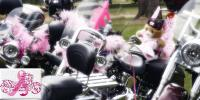 The Victorian Pink Ribbon Ride 2017