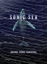 May 18 Sonic Sea Screening: Avoca Beach Picture Theatre