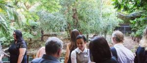 Shared Christmas Party – Melbourne Zoo