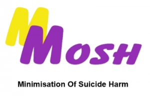 Feb 3 Quiz Night for Minimisation of Suicide Harm (MOSH) - Burton SA