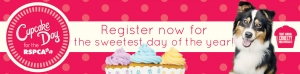August 15 Cupcake Day for the RSPCA QLD - Queensland Wide