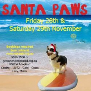 Support the Gold Coast RSPCA Santa Paws