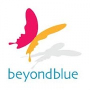Oct 15 - Charity Auction Night For Beyondblue - Brighton Melbourne
