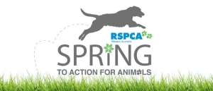 RSPCA Spring to Action for Animals 2014