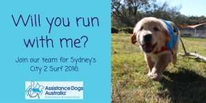 20 Sydney City2Surf Gold Runners Spots Available Supporting Assistance Dogs Australia Team