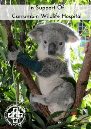 Sat May 7 - Currumbin Wildlife Hospital Foundation Annual Gala Dinner - Sanctuary Under the Stars - Gold Coast