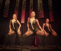 The Silhouettes - Fundraiser Dance/Entertainment